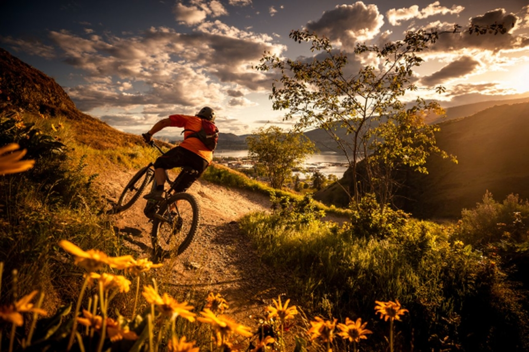 Bikeparks in der Steiermark: Die besten Parks und Trails